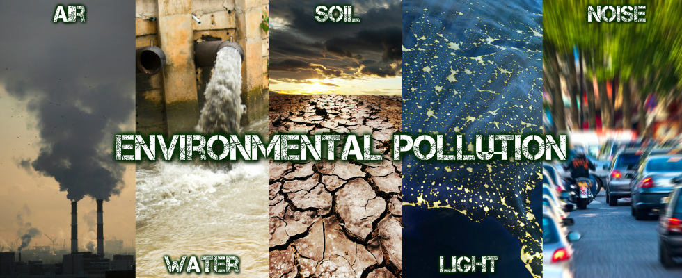 air water soil noise pollution essay Published: fri, 10 jun 2016 pollution 'pollution', the most commonly used word in our everyday life relating to the destruction of the natural air we breathe, the water we drink and the land we live on.