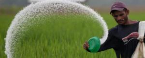 Slow release fertilizers