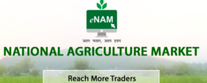 e-commerce boom in Indian agriculture