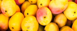 The 8 benefits of Mango