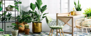 Green your interior