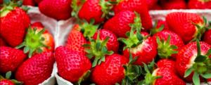 10 antidiabetic superfoods