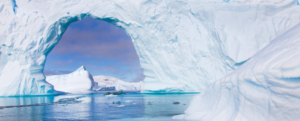 Ten years to save Antarctica … and the rest of the world!