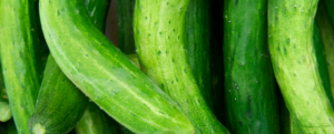 The tips for growing cucumbers in the garden.