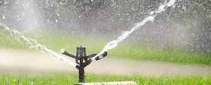 Provide the right watering to go on vacation without worrying.