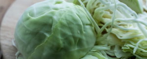 "All about ""Cabbage"""