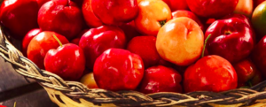 All about Acerola berries