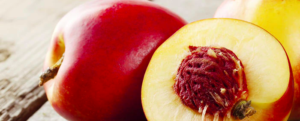 "All about ""Brugnon / Nectarine"""
