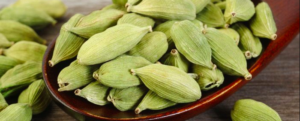 "All about ""Cardamom"""