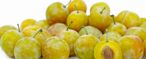 "All about ""Mirabelle Plum"""