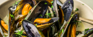 "All about ""Mussel / Mold"""