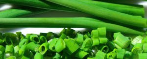 "All about ""Chives"""
