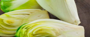 "All about ""Chicory and Endive"""
