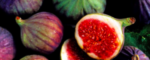 "All about ""Fig"""