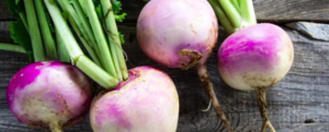 "All about ""Turnip"", a low calorie but rich vegetable"