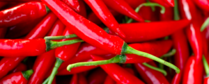 "All about ""Chilli Pepper"""