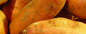 "All about ""Sweet potato"""
