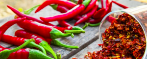 "All about ""Chilli / Pepper"""