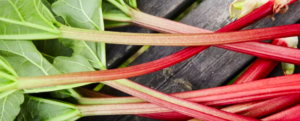 "All about ""Rhubarb"", what to do with this food?"